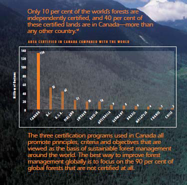 10-percent-of-worlds-forests