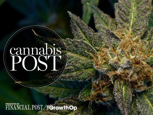 Postmedia, Globe and Mail put spotlight on cannabis news